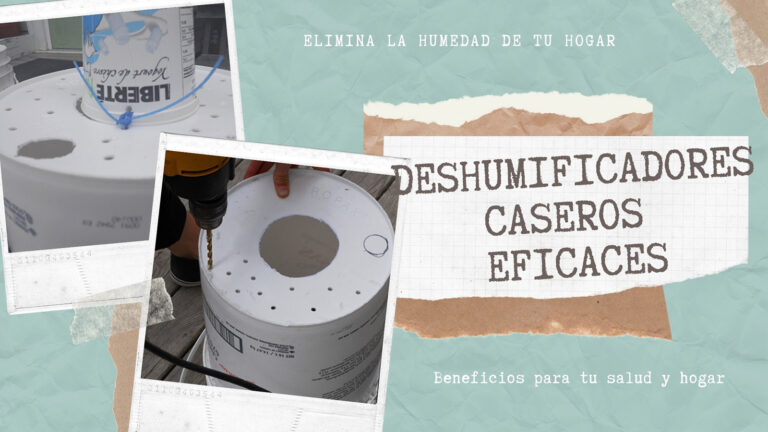 How to effectively remove moisture at home using home and industrial dehumidifiers